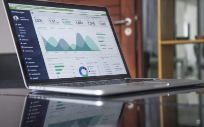 Vacature Online Marketing Stage